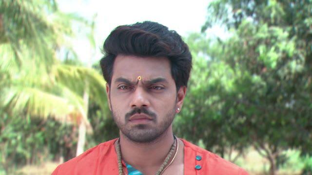 Watch Agni Sakshi TV Serial Episode 115 - Shanker's Conditions for Gowri  Full Episode on Hotstar