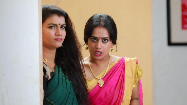 Watch Raja Rani TV Serial Episode 323 - Archana, Vadivu's Failed Plans Full  Episode on Hotstar