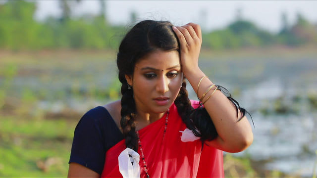 Watch Raja Rani TV Serial Episode 17 - Snake Bites Sembaruthi Full Episode  on Hotstar