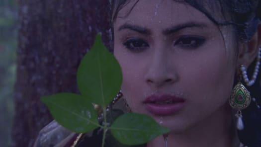 Watch Devon Ke Dev    Mahadev TV Serial Episode 10 - Shiva's explanation  Full Episode on Hotstar