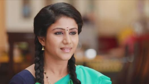 Raja Rani Serial Full Episodes, Watch Raja Rani TV Show Latest