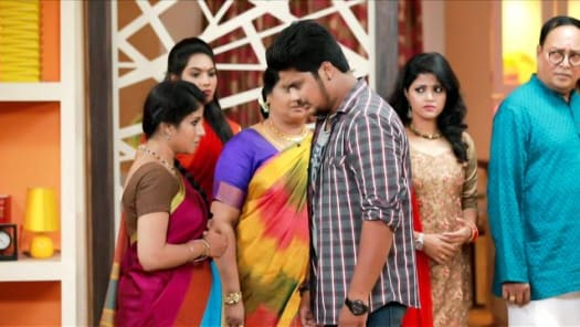 Watch Raja Rani TV Serial Episode 6 - Karthik Vouches For Sembaruthi